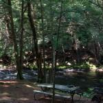 dsc04440-pine-pool